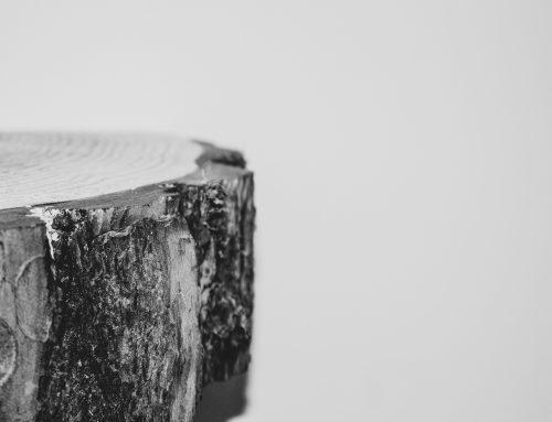 Duurzaamheid in de Bouw – Aflevering 2 Hout – Clique media Podcast