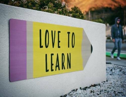 Nieuwe leergangen maken meer inclusiviteit mogelijk