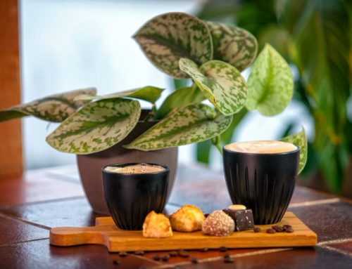 Coffee Based maakt van koffiedik een koffiekop